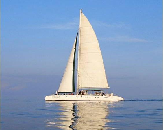 Catamaran Colón